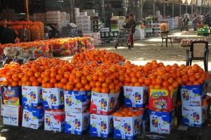 Oranges By Hassan Ibrahim